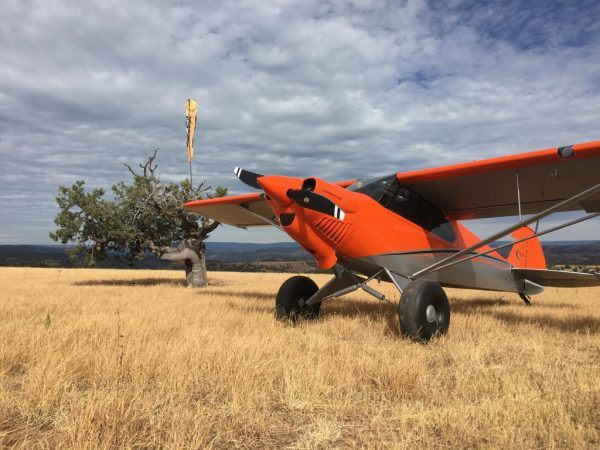 Carbon Cub Ex 3 Kits And Fx Aircraft Are Already Being Delivered To Customers For More Information About The New Airplanes